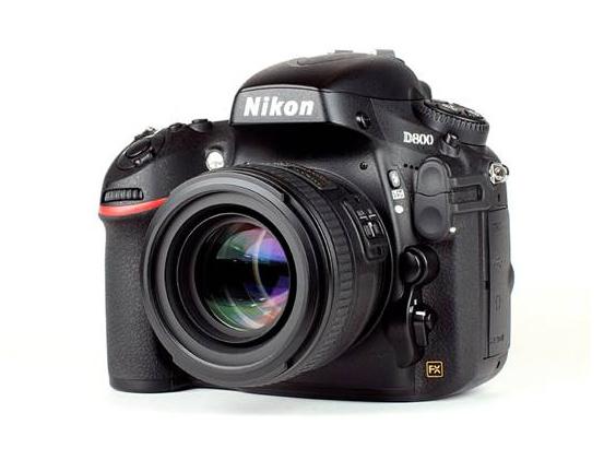 Nikon Workshop - D800 and D800E