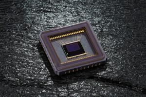 Nikon-D4S-sensor