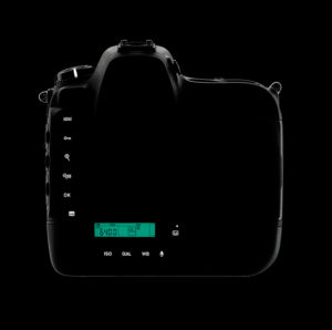 Nikon-D4s-backlight-display