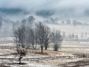 winter-photography-competition